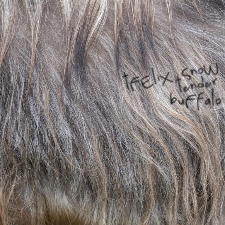 Felix Snow Tender Buffalo