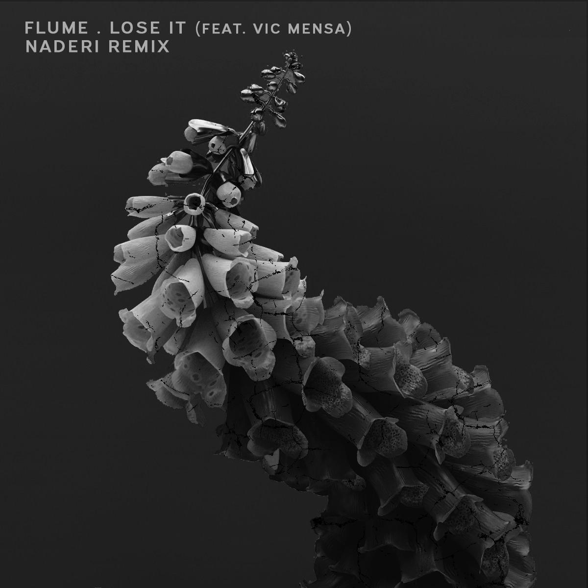 Flume x Naderi Remix Artwork