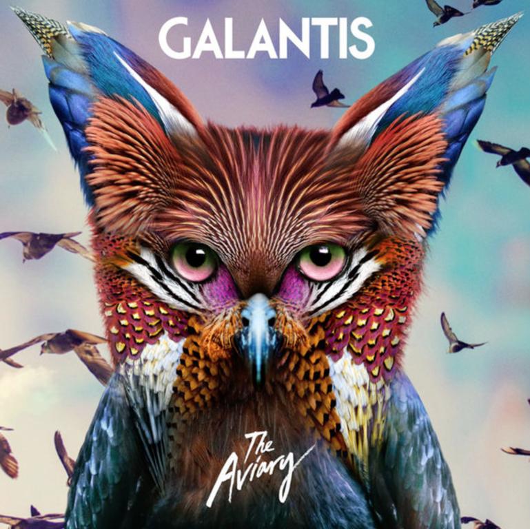 Galantis the avairy art