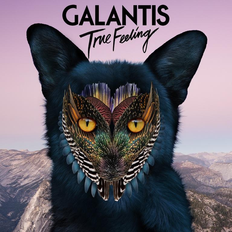 Galantis True Feeling