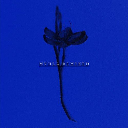 Laura Mvula - She (Shlohmo Remix) : Soulful Downtempo / Chill Trap Remix [Free Download]