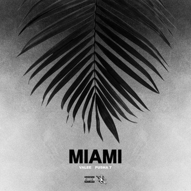 Miami Valee Artwork