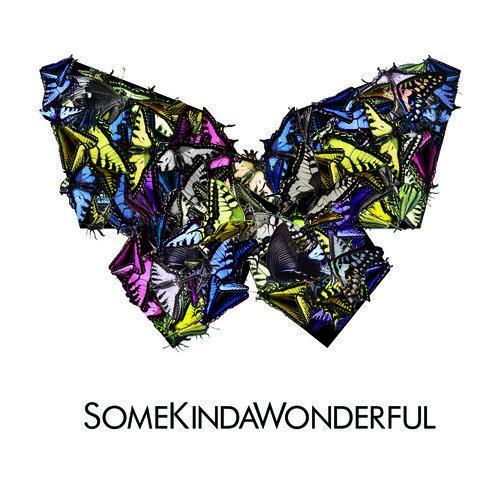 SomeKindaWonderful - Reverse (Passion Pit Remix) : Indie / Electro
