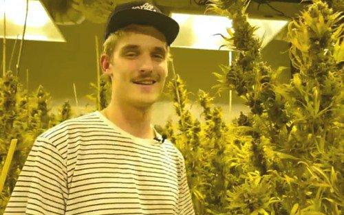 "Watch GRiZ Go Behind The Scenes In His New Cannabis Cup Winning Weed Strain ""Griz Kush"" Short Film"