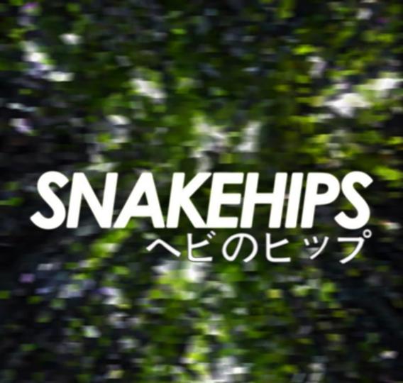 Snakehips art re