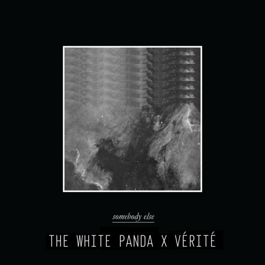 White Panda Artwork