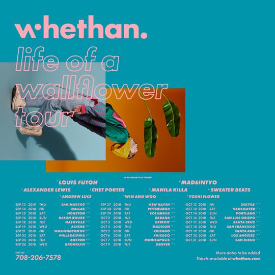 whethan life of a wallflower
