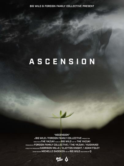big wild ascension